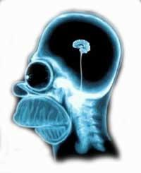 как можно улучшить работу мозга
