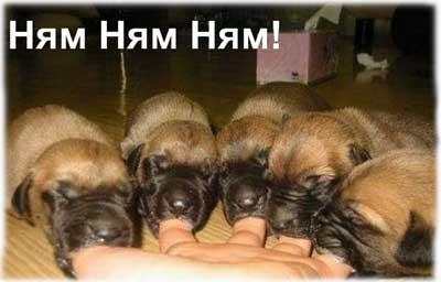 дай мамуля молочка :)