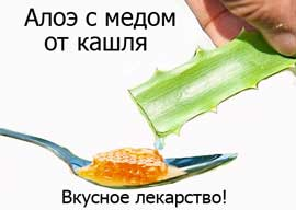 алоэ от кашля с медом