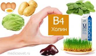 vitamin-b4