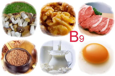 soderzhanie-vitamina-b9